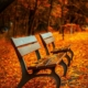 public entity insurance for parks